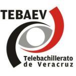 TEBAEV CALZONTEPEC